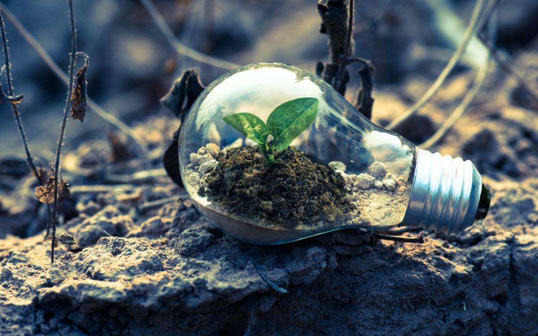 Ako sa IT podieľa na zelenej transformácii?